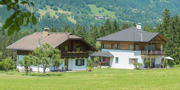 Leitner-Ebenberger