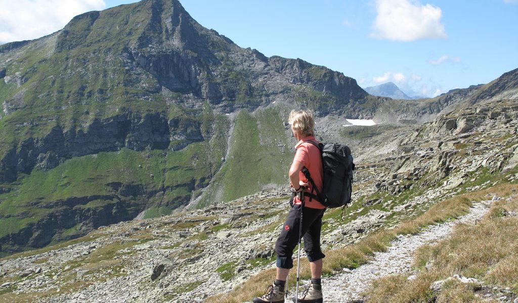 1538 Öde Woisgen – Romatenwinkel – Romatenspitz (2696 m)