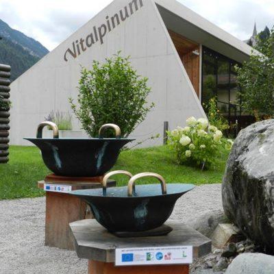 Vitalpinum1