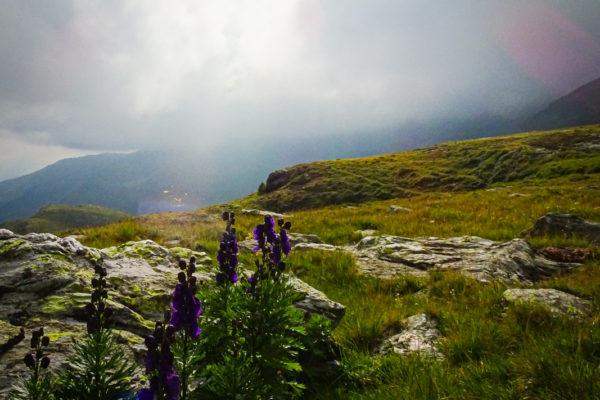 5 Wenn sich der Nebel lichtet Kreuzeck Höhenweg Schütt