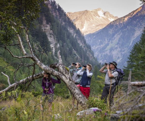 im Nationalpark Hohe Tauern - Seebachtal